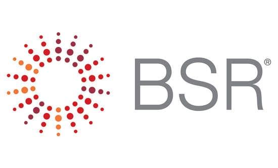 Business for Social Responsibility Logo